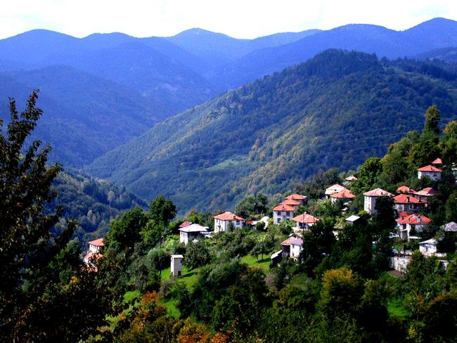 Bulgaria large