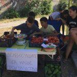 Едно различно лято: деца от Пловдив продават зеленчуци, които са отгледали сами