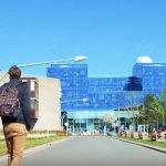 Учебната такса за университетите в Холандия ще бъде -50% от тази година!