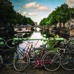 Холандия: Задължителен стаж