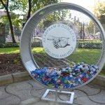 Събират капачки в двора на Икономическия университет във Варна