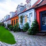 Дания: Привлекателна образователна дестинация