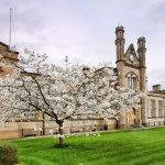 Частните училища във Великобритания в колапс… Могат да затворят!