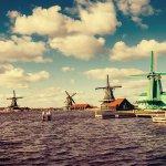 Какво е необходимо, за да завършим обучението си в Нидерландия?