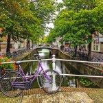 Marketing Management във Fontys Venlo, Нидерландия