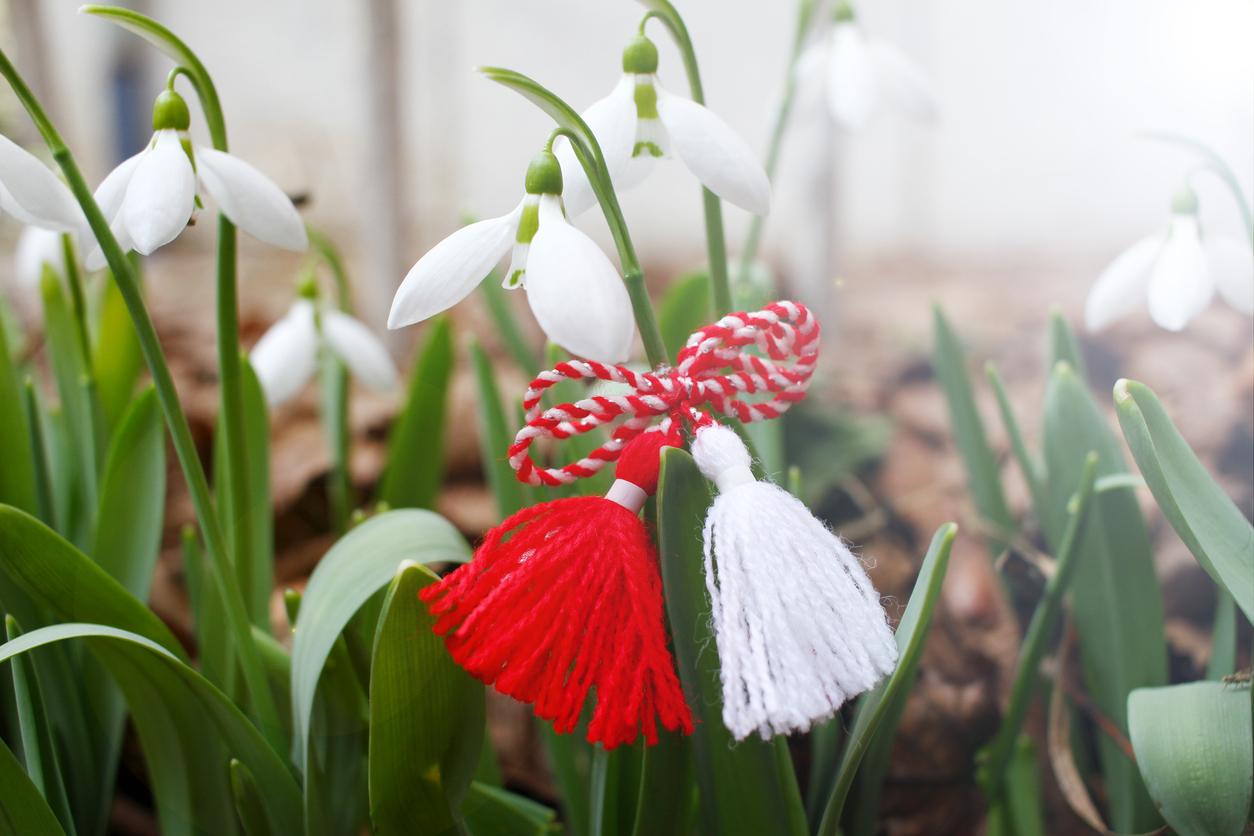 Martenitsa and snowdrops, spring